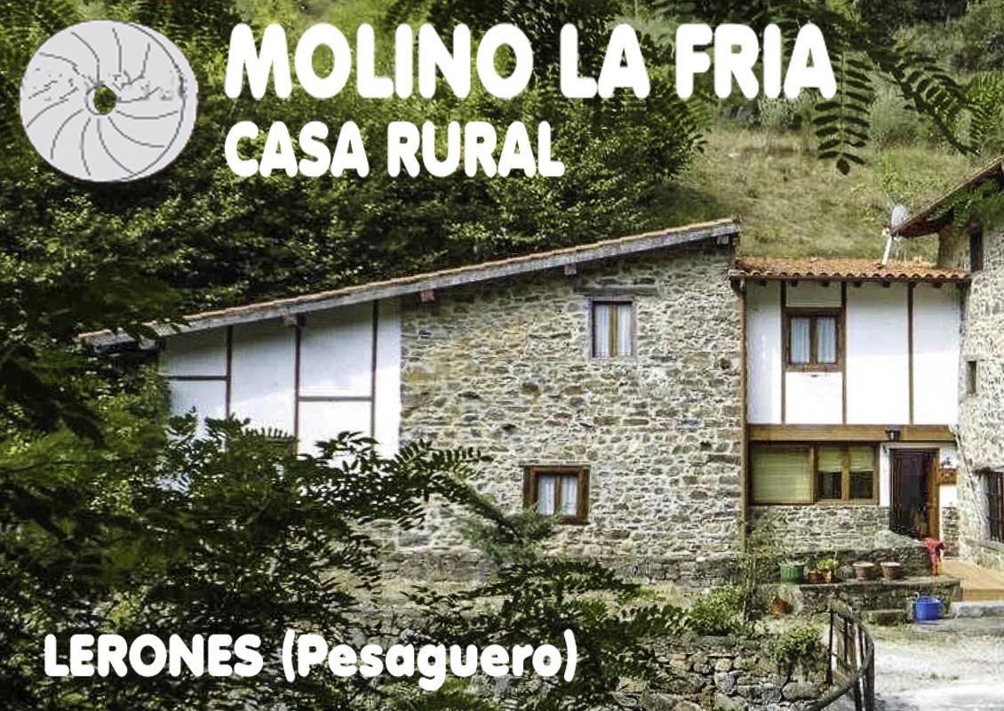MOLINO LA FRIA LERONES